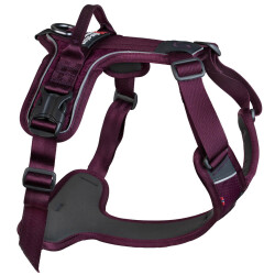 Non-Stop Ramble Harness, Purple, L
