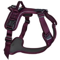 Non-Stop Ramble Harness, Purple, M
